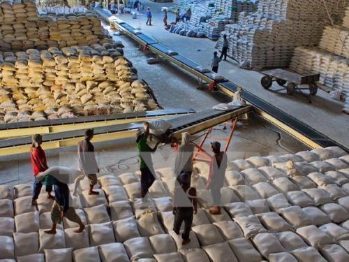 Xuất khẩu gạo 6 tháng tăng gần 18%