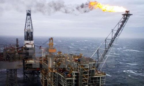 Giá dầu châu Á giảm hơn 1% phiên chiều 11/5