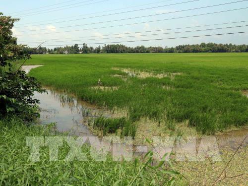 Thừa Thiên - Huế thiệt hại hơn 149 tỷ đồng do không khí lạnh tăng cường
