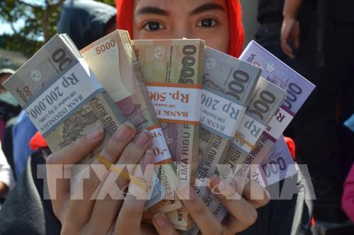 Ngân hàng trung ương Indonesia bắt đầu mua trực tiếp trái phiếu chính phủ