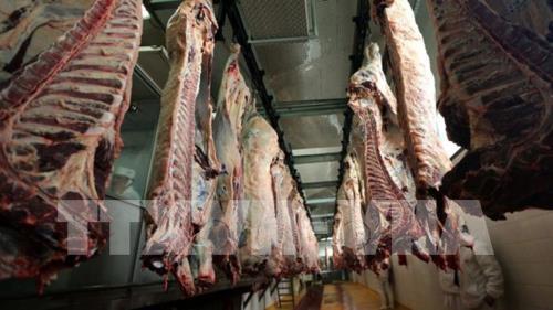 Trung Quốc cấm cửa bốn công ty xuất khẩu thịt bò của Australia