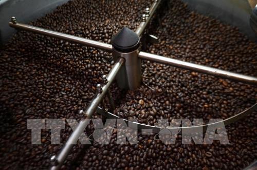 Giá cà phê tiếp tục phục hồi với mức tăng nhẹ