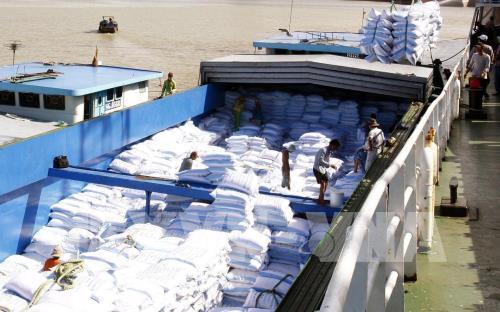 Thị trường nông sản tuần qua: Giá lúa gạo ổn định, giá tiêu lại tăng mạnh