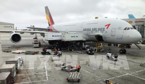 Dịch COVID-19: Asiana Airlines cho nhân viên nghỉ 15 ngày/tháng