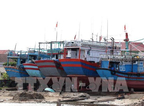 Bộ Tài chính trả lời các kiến nghị về chính sách bảo hiểm tàu cá