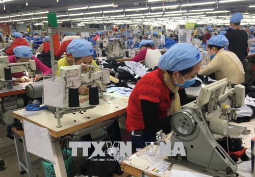 Doanh nghiệp sản xuất cầm chừng chờ nguyên liệu