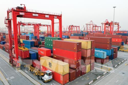 Maersk: Nhu cầu vận tải biển giảm đáng kể trong năm nay