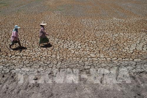 Thái Lan sẽ xây nhà máy khử mặn nước biển đối phó với hạn hán