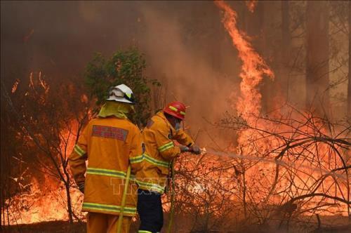 Cháy rừng tại Australia thải 830 triệu tấn CO2 vào khí quyển
