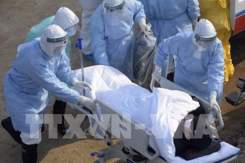 WHO: Cơ hội kiềm chế dịch bệnh COVID-19 tại châu Phi đang hẹp dần