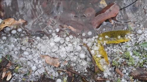 Dự báo thời tiết tuần tới: Bắc Bộ và Bắc Trung Bộ có dông, lốc, sét kèm theo mưa đá