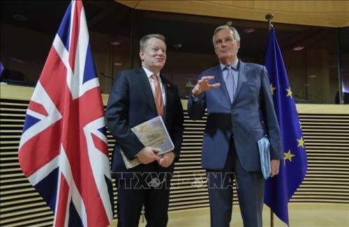Tiến triển trong đàm phán thỏa thuận thương mại Anh - EU hậu Brexit