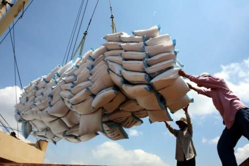 Chưa mua đủ số lượng gạo dự trữ Quốc gia