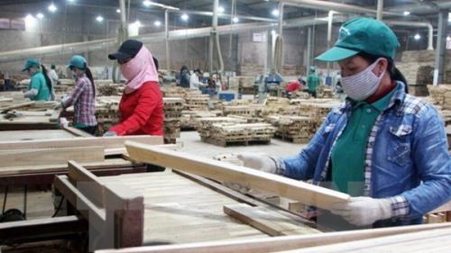 Tạm ngừng tạm nhập, tái xuất gỗ tròn, gỗ xẻ tự nhiên từ Lào và Campuchia