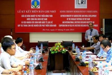 Việt Nam và ILRI hợp tác phát triển chăn nuôi theo chuỗi giá trị