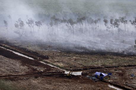 Cháy rừng Indonesia: Singapore kêu gọi ASEAN hợp tác