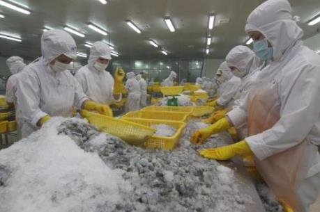 Sử dụng hóa chất trong thủy sản đang ở mức báo động