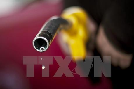 Bộ Tài chính sẽ theo dõi sát diễn biến giá dầu