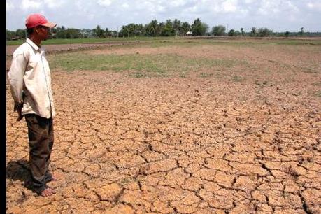 Biến đổi khí hậu đang đe dọa đến an ninh lương thực