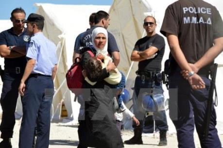 Italy bắt giữ nhiều chủ gánh xiếc vì hỗ trợ người di cư trái phép