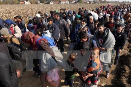 UNHCR:  91% người di cư tới Hy Lạp là chạy trốn chiến tranh