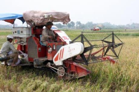 Phú Thọ hỗ trợ doanh nghiệp đầu tư vào nông nghiệp, nông thôn