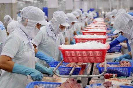 Nếu không thay đổi, doanh nghiệp cá tra Việt sẽ hết đường vào Mỹ