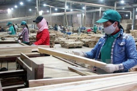 Gỗ rừng tự nhiên mới đáp ứng 10% nhu cầu nguyên liệu chế biến xuất khẩu