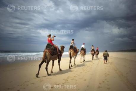 Lượng khách du lịch quốc tế đến Australia tăng đột biến
