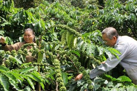 Giảm rủi ro nông nghiệp thông qua liên kết công-tư