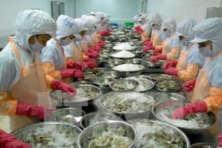 Tôm sú đông lạnh của Việt Nam chiếm ưu thế trên thị trường Mỹ
