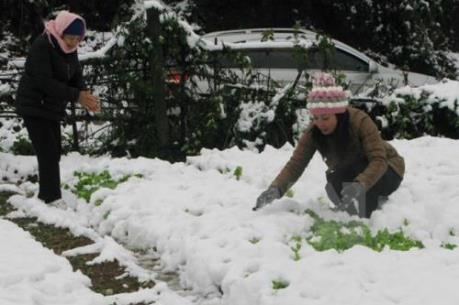 Chiều mai, không khí lạnh tăng cường tràn về miền Bắc