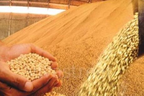 Mỹ Latinh đứng đầu thế giới về xuất khẩu lương thực