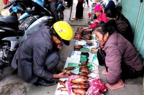 Sôi động chợ thịt chuột Cổ Dũng