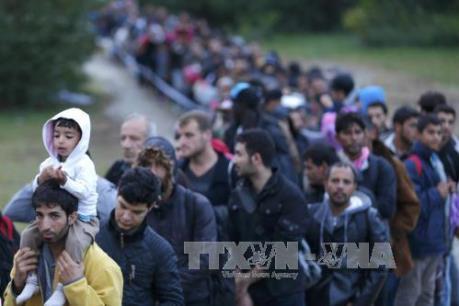 EU hỗ trợ khẩn cấp 48 triệu euro để tiếp nhận người nhập cư