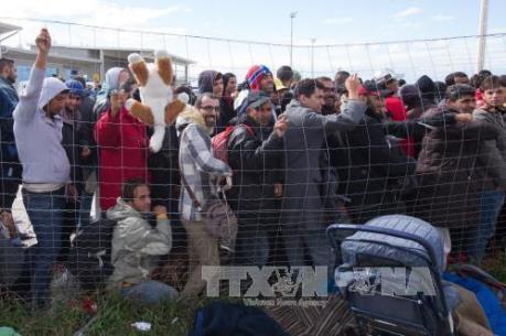 Vấn đề người di cư: 1/3 dân số Đức muốn đóng cửa biên giới