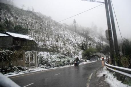 1.674 khách hàng ở Sơn La bị mất điện do băng tuyết