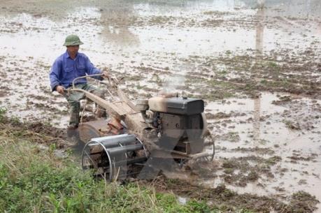 Dừng lấy nước đợt 2 vụ Đông Xuân 2015-2016