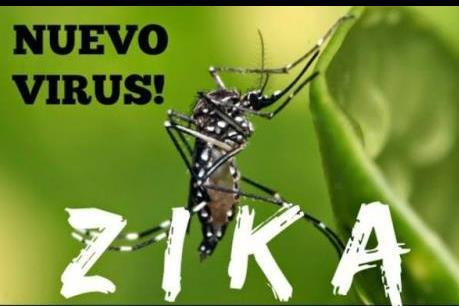 Nguy cơ lan truyền vi rút Zika vào Việt Nam là rất lớn