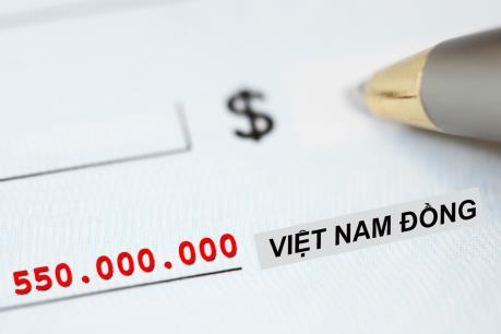 Xử phạt ông Trịnh Công Sơn 550 triệu đồng
