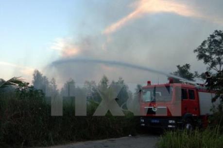 Khống chế thành công đám cháy tại Vườn quốc gia Hoàng Liên