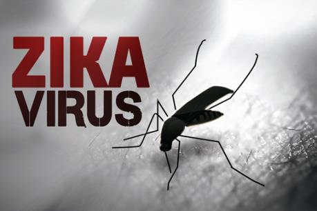 Bộ Y tế: Phụ nữ cần tự bảo vệ mình để tránh nhiễm vi rút Zika