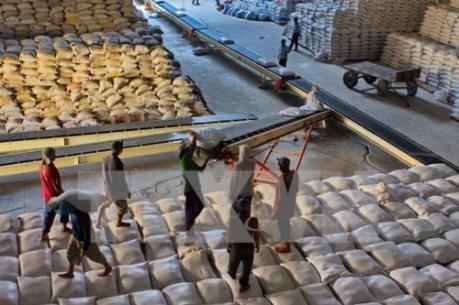 """Doanh nghiệp xuất khẩu gạo """"khát"""" thông tin về thị trường"""