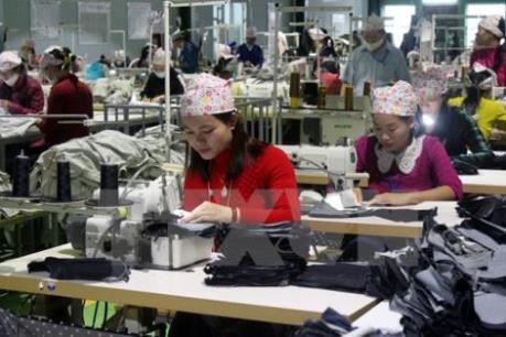 Thị trường lao động Việt Nam: Thất nghiệp ở nông thôn có xu hướng tăng