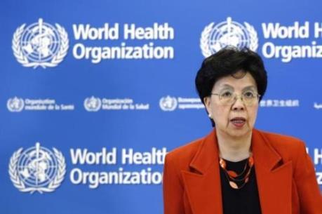 """Tổng giám đốc WHO: """"Các nghiên cứu mới nhất về virus Zika rất đáng lo ngại"""""""