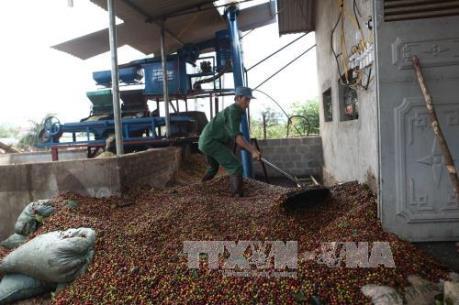 Kim ngạch xuất khẩu nông, lâm, thủy sản tăng 5,5%