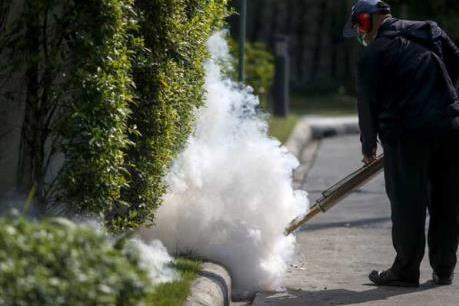 Bộ Y tế nâng mức cảnh báo phòng chống dịch bệnh do vi rút Zika