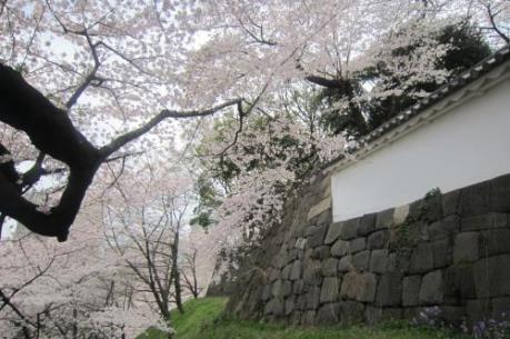 Nhật Bản xúc tiến quảng bá du lịch tại Hà Nội