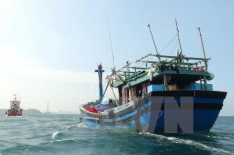 Phú Yên tăng cường quản lý thiết bị thông tin liên lạc, giám sát tàu cá
