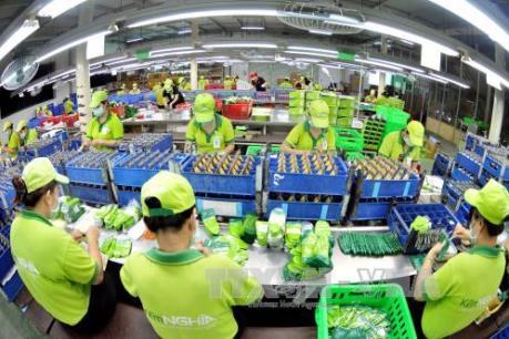 Sửa đổi Luật Thuế xuất khẩu, Thuế nhập khẩu tạo động lực cho doanh nghiệp phát triển